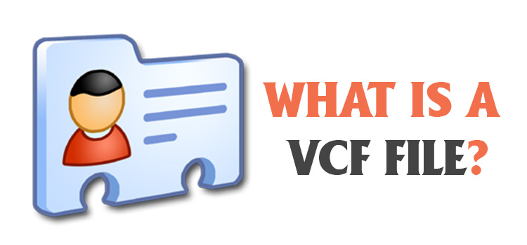 What Is a Vcf File FI