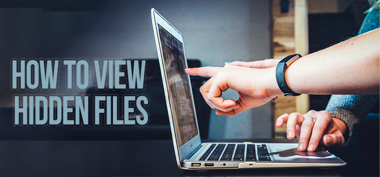 How to View Hidden Files FI