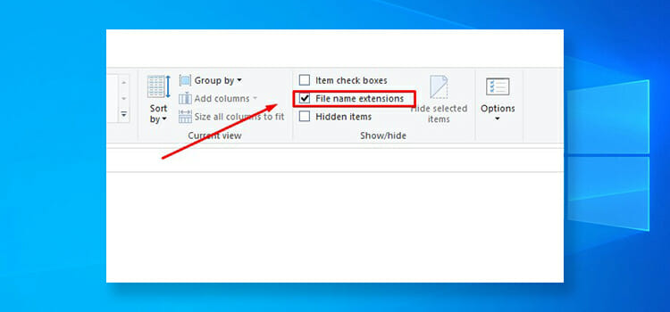 Common Windows file extensions