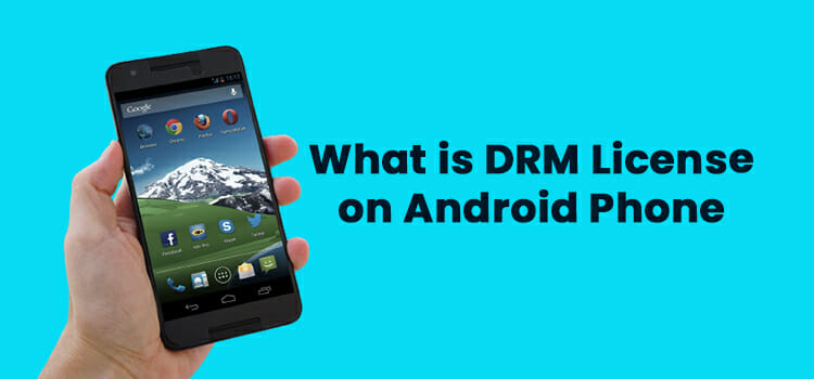 What is DRM License